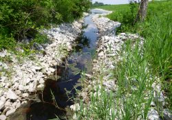 Lake Drive Drainage Ditch / Looking East (July 24, 2015)