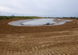Area 4A Stormwater Retention Pond / Looking West (October 30, 2015)