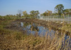 Drainage Slough Near Lake Drive Along OU1 Northern Boundary / Looking West (October 24, 2014)
