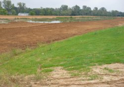 Area 4A Clean Cover Soil Application / Looking East / Northeast (September 29, 2015)