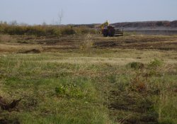 Mulching and Clearing in OU-2 to Prepare for Soil Relocation / Looking East / Southeast (November 12, 2014)