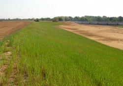 Straw and Seeding Activities, Southeast Corner of Area 3B / Looking North / Northeast (May 6, 2015)