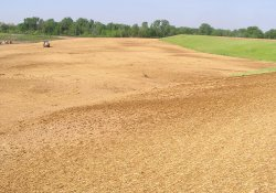 Straw and Seeding Activities, Southeast Corner of Area 3B / Looking South (May 6, 2015)