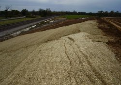 Erosion Control Matting Installed Over New Seed Above Gabion Wall / Looking South (October 30, 2014)