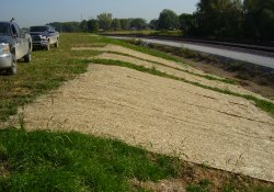 Erosion Repair, Southeastern OU1 Boundary / Looking Northeast (September 29, 2014)