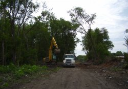 Site Clearing, Tire Disposal / Looking East (July 18, 2014)